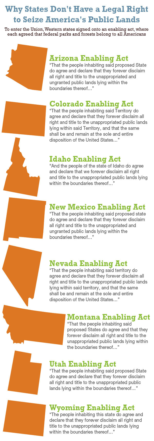Enabling Act Graphic